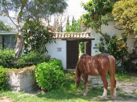 Rancho los Lobos - (Urlaub, reiten, Reiterhof)