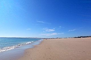 Meia Praia - (Strand, Portugal, Algarve)