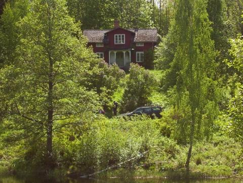 wo kann man in schweden gut pilze sammeln wer hat infos europa skandinavien wald. Black Bedroom Furniture Sets. Home Design Ideas