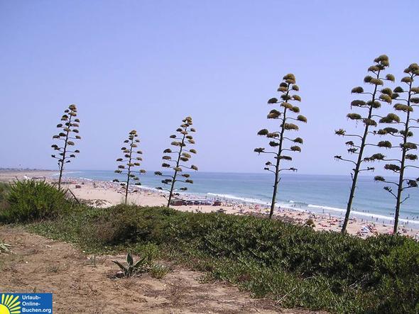 """""""Unendlicher Strand"""" - Conil de la Frontera - (Urlaubsort, Urlaubsziel)"""