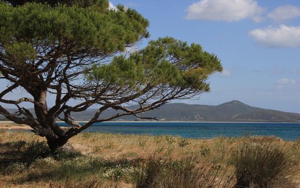 Strand bei Posada - (Italien, Sardinien)