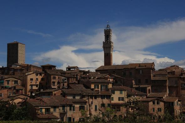 Blick auf Siena mit dem Turm des Palazzo Pubblico - (Europa, Italien, Reiseziel)