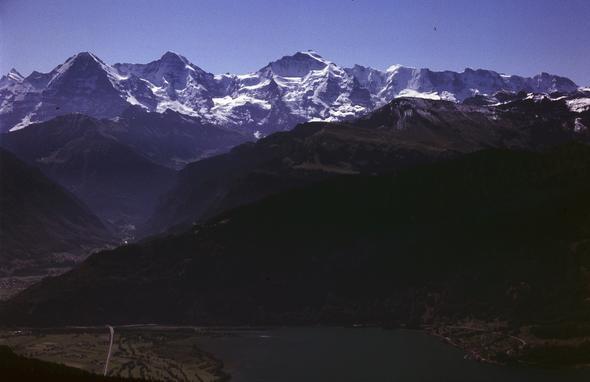 auf dem Niederhorn - (Wandern, Gletscher, Ausflugsziele)