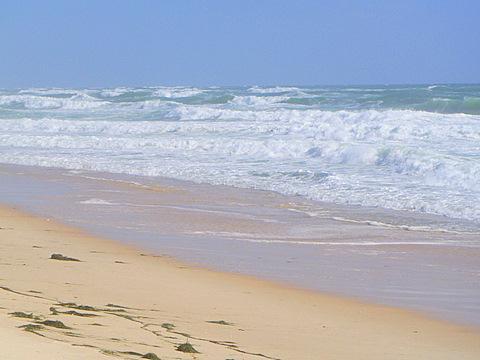 Strand Ilha Culatra - (Insel, Empfehlung, Portugal)