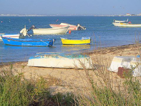 Lagunenseite der Insel - (Insel, Empfehlung, Portugal)