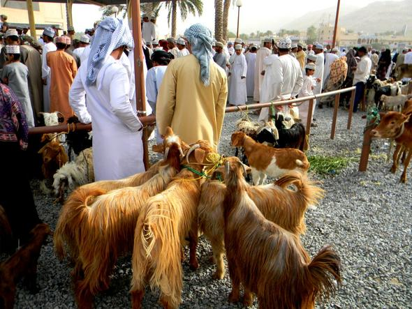 Markt in Nizwa - (Oman, teuer)