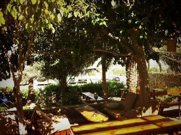 Arava Hostel in Eilat - (Hostel, Backpacker, Israel)