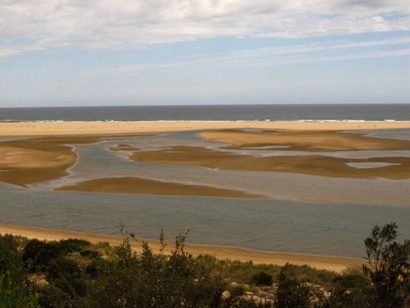 Lakes Entrance - (Australien, Natur, Nationalpark)