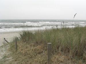 Strand - (Ostsee, Dänemark, Nordsee)
