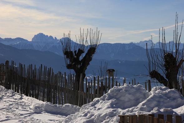 Aussicht vom Walderhof, wo wir im letzten Jahr untergebracht waren. - (Winter, Sport, Ski)