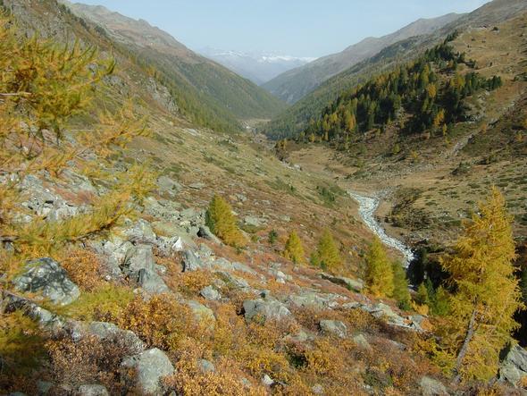 Turtmanntal im Herbst - (Reise, Urlaub, Wandern)