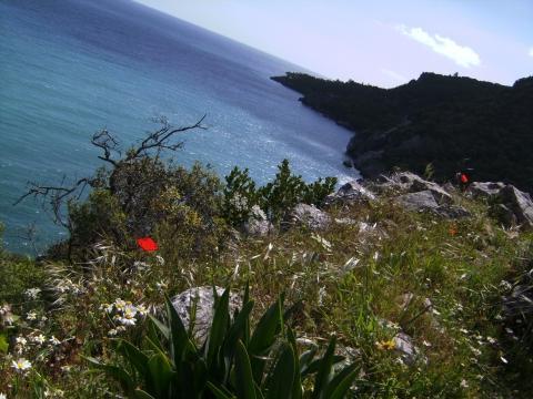 Olympos Strand - (Spanien, Reiseziel, Wandern)