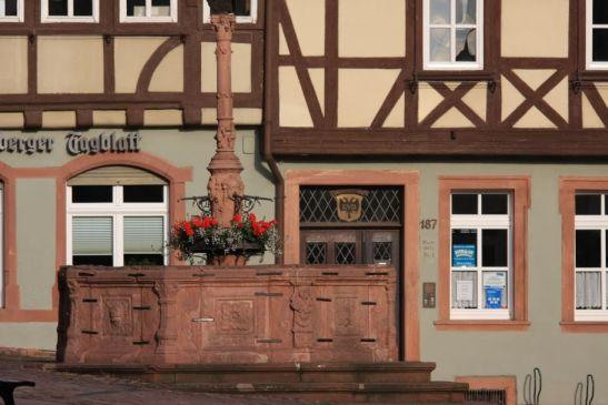 Das ist der alte Marktbrunnen am Miltenberger Schnatterloch - (Deutschland, Anreise, Wirtshaus im Spessart)