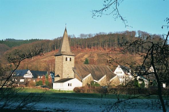 Wenholthausen - (Tiere, Haustiere)