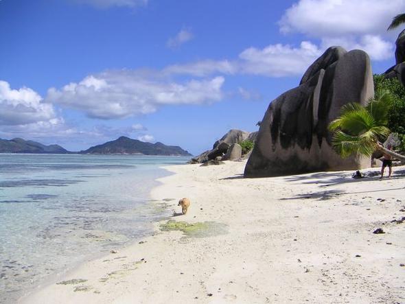 Bild 6 - (Urlaub, Strand, Strandurlaub)
