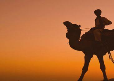 Indien-Traum:-) - (reisefrage, Beschaffung von Visum)