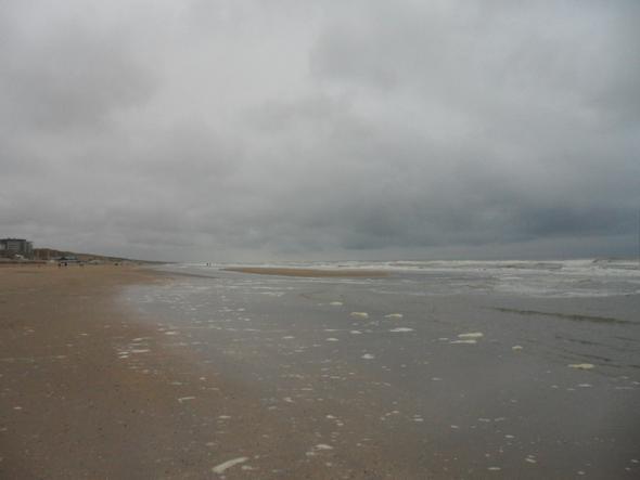 Nur Sand und Meer - (Holland, Badeurlaub, Entspannung)
