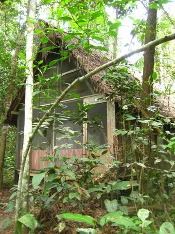 Die Cabanas mitten im Dschungel - (Brasilien, Bolivien, Kolumbien)