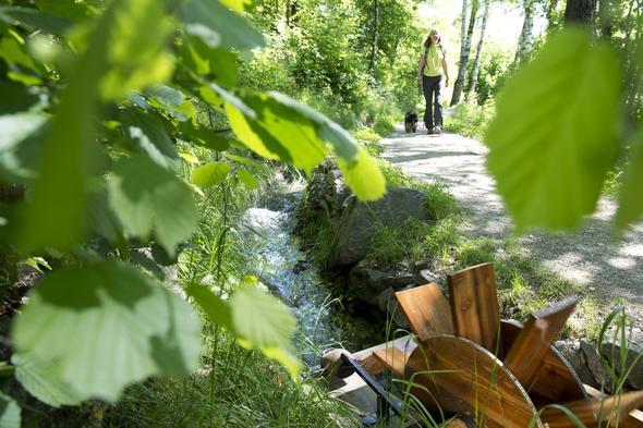 Wandern an herrlichen Waalwegen, Partschinser und Rablander Waalweg - (Italien, Reiseziel, Pension)