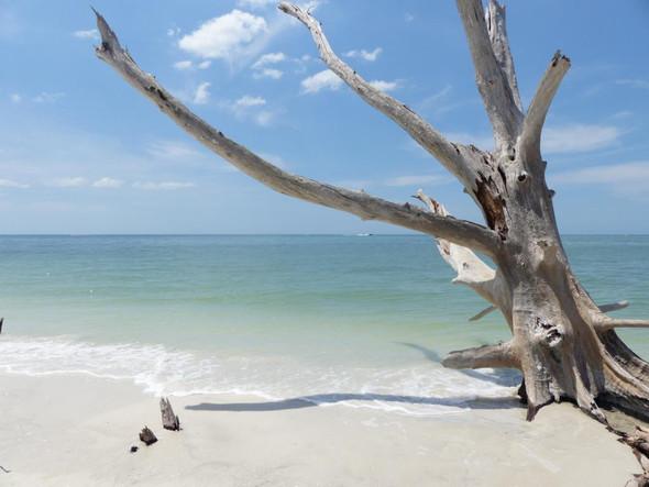 Lovers Key State Park - (Rundreise, Florida, Urlaubstipps)
