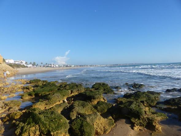 Strand bei Ferienhaus bei Conil Andalusien - (Europa, Reiseziel, günstig)