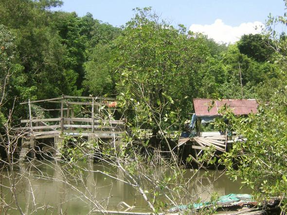 Jemand wohnt im Urwald (Pulau Ubin) - (Thailand, Karibik, Strandurlaub)
