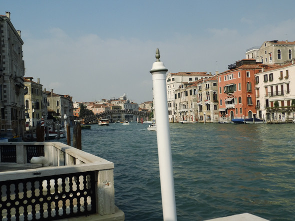 CG - (Venedig und Tauben, Phobie)