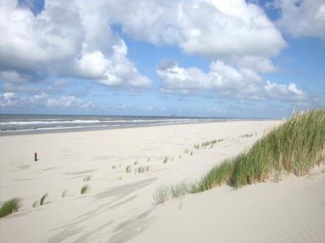Blick auf den Strand von Ameland zwischen Buren und Het Oerd - (Europa, Familienurlaub, Inselurlaub)