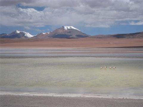 Der Weg von Bolivien nach Chile vom Salar - (Reise, Südamerika, Argentinien)