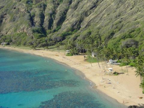 Oahu - (USA, Hotel, Strand)