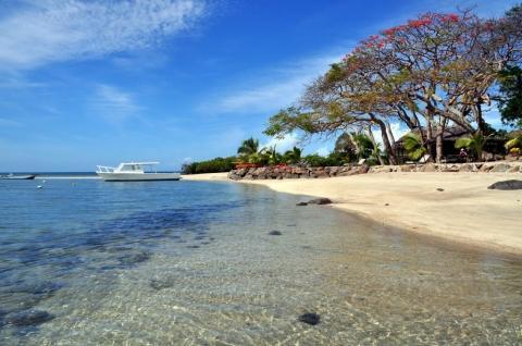 - (Insel, Tour, Fiji)