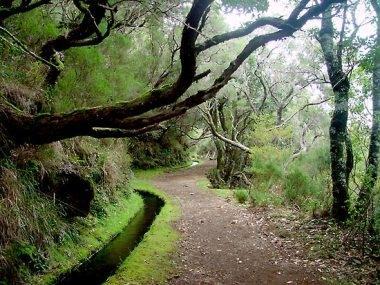 wildromantische Wanderungen - (Spanien, Portugal, Kanaren)