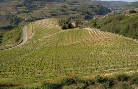 - (Italien, Gesundheit, Region)