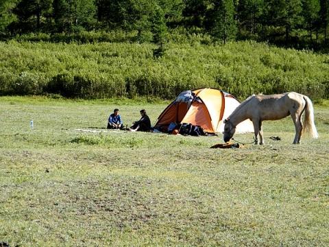 Mit dem Pferd im Khentij - (Asien, Pferde, Mongolei)