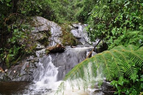 San Rafael - (Südamerika, Lateinamerika, Natur)
