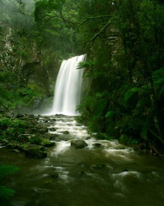Otway NP - (Australien, Ostküste, Reisedauer)