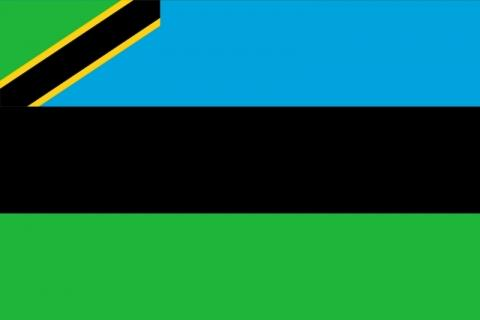 Bilduntertitel eingeben... - (Tansania, Sansibar, Zanzibar)