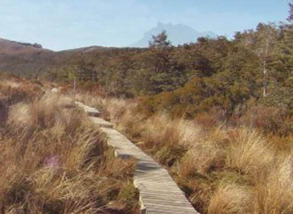 Wanderweg Te Araroa - (Neuseeland, Te Araroa)